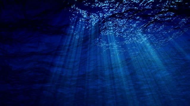 underwater 4k loop - under the sea fish video stock e b–roll