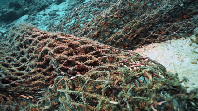 Underwater discarded Ghost Net fishing net choking coral reef