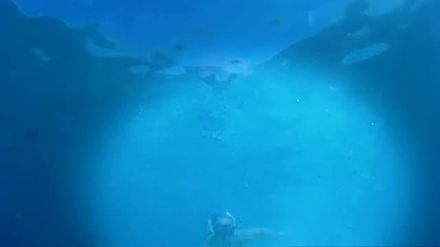 podwodne rybak - spoiler filmów i materiałów b-roll