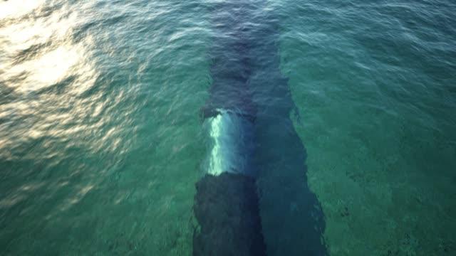 underwater gasledning - pipeline bildbanksvideor och videomaterial från bakom kulisserna