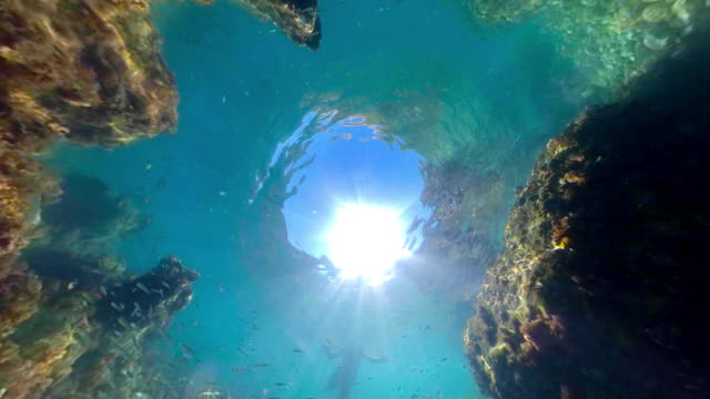 stockvideo's en b-roll-footage met onderwater, little planet-formaat - ocean under water