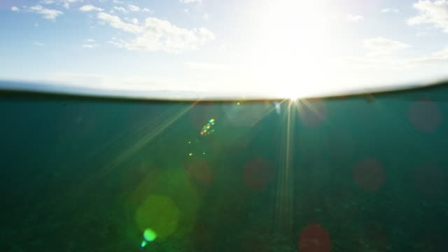 Underwater Ocean Sunset Split View video
