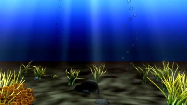 underwater part-2 video