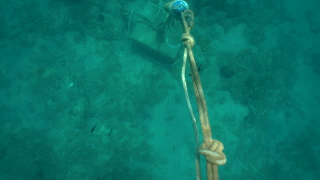 Underwater ropes, buoys and chains attached to the bottom of the turquoise seabed. Mooring systems. Bubbles, particles, plankton, fauna and flora.Version 5 Underwater view of ropes, buoys and chains attached to the bottom. Underwater mooring systems. Bubbles, particles, plankton, fauna and flora. diving to the ground stock videos & royalty-free footage