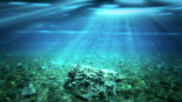 Underwater scene Realistic underwater Scene with sun rays and nice glowing light. Well as abstract background ocean floor stock videos & royalty-free footage