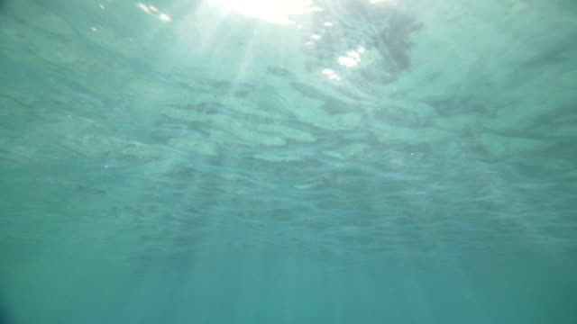 Underwater scene with sun rays shining through video