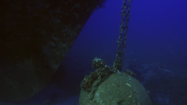 Underwater Shipwreck in the red sea video