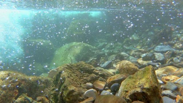 girato sott'acqua in un limpido e veloce torrente di montagna in spagna, montagna dei pirenei - acqua dolce video stock e b–roll