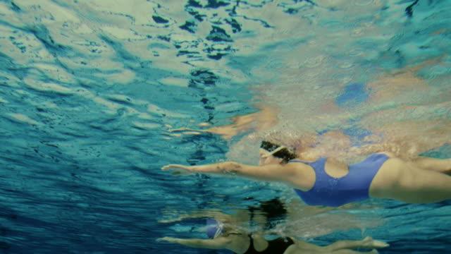 水中撮影の水泳、雌 - 水泳点の映像素材/bロール