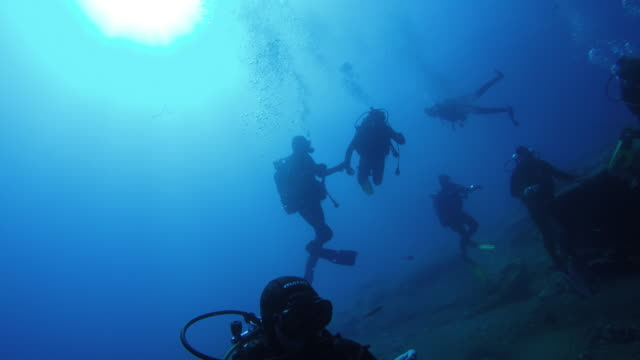 Underwater shot of a group of divers video