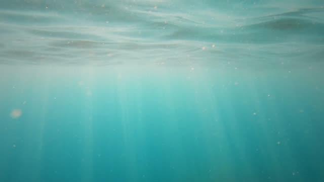 水中太陽光の海の波が振動し、光線と流れる - 海中点の映像素材/bロール