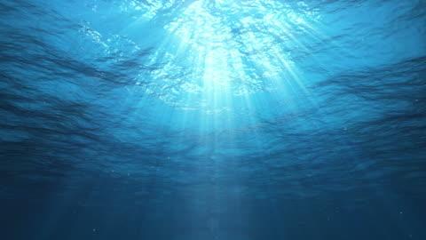 subacqueo raggi di sole nell'oceano (anello - elementi in loop video stock e b–roll