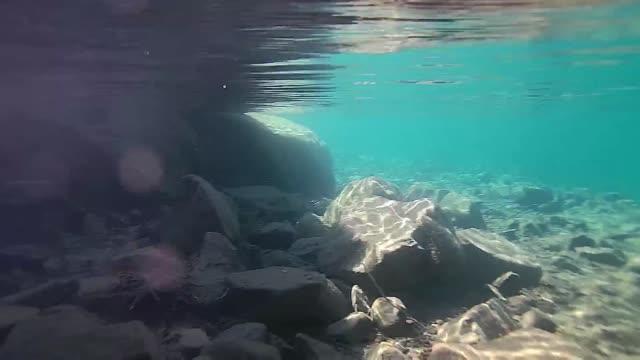 Underwater video of Lake Tahoe CA Underwater video of Lake Tahoe CA USA shot in high resolution HD aqualung diving equipment stock videos & royalty-free footage