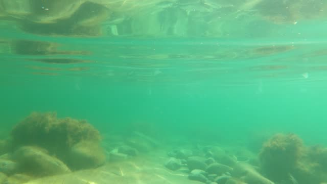 vídeos de stock, filmes e b-roll de vista subaquática em mar transparente com pedras - equipamento de esporte aquático