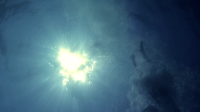 Underwater View of Sun and Swimmers video