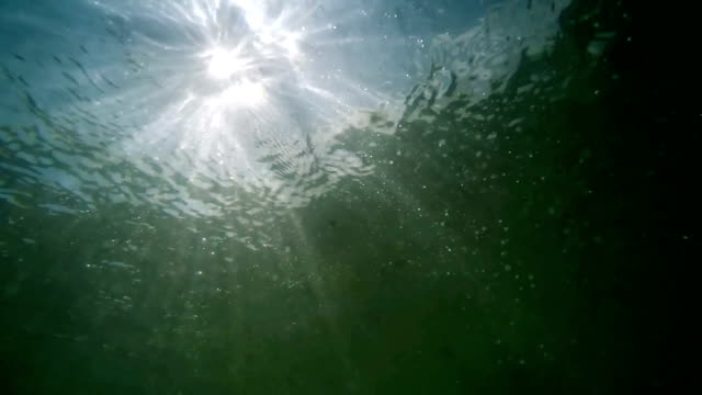underwater view to surface with fractal waves and light rays, slow motion - река стоковые видео и кадры b-roll