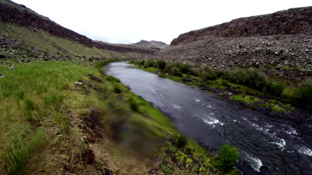 Unhurried Flow Mongolian Crystal Clear River in The Midst of a Vast Steppe video