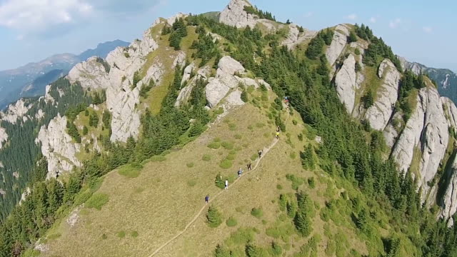 Unidentified group of mountain climbers , walking in a row on high altitude mountain trail surrounded by steep clifs and coniferous forest, aerial shot video