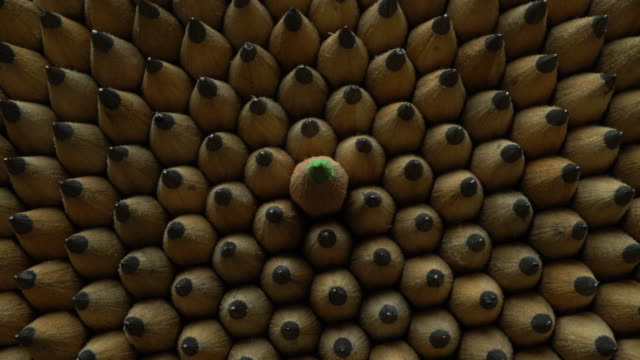 Uniform geometrical group of graphic pencils top view, green one sticking out video