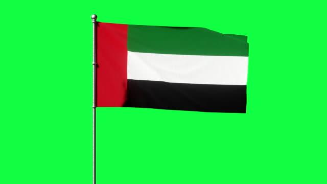 birleşik arap emirlikleri bayrağı yeşil ekranda sallanıyor. bae bayrağı döngü 3d video - uae flag stok videoları ve detay görüntü çekimi