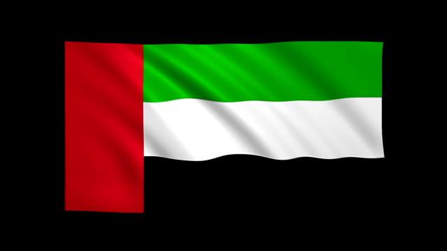 zjednoczone emiraty arabskie flaga loopable matte w zestawie - stock video - uae flag filmów i materiałów b-roll
