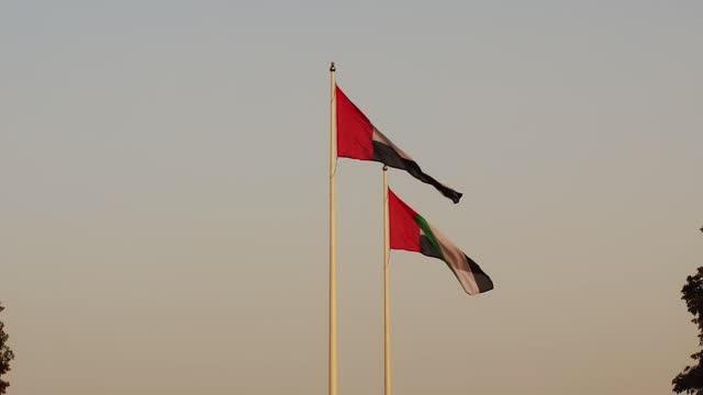 birleşik arap emirlikleri bayrağı, bae ulusal bayrağı - uae flag stok videoları ve detay görüntü çekimi