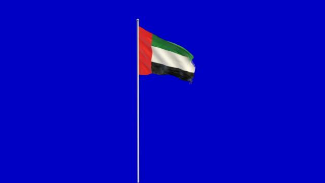 birleşik arap emirlikleri bayrağı yükselen - uae flag stok videoları ve detay görüntü çekimi