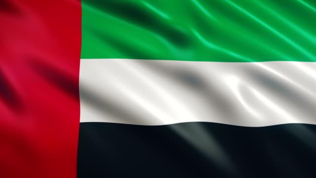 birleşik arap emirlikleri bayrağı - uae flag stok videoları ve detay görüntü çekimi