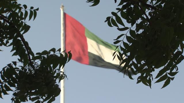 united arab emirates flag - uae flag filmów i materiałów b-roll