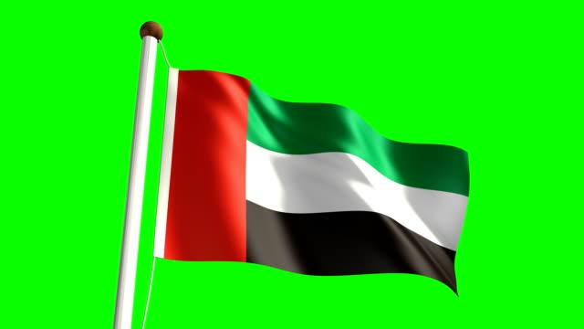 united arab emirates flag (with green screen) - uae flag stok videoları ve detay görüntü çekimi