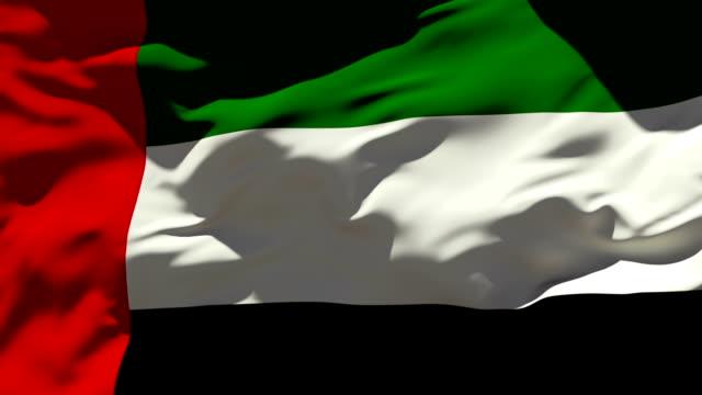 united arab emirates flag - uae flag stok videoları ve detay görüntü çekimi