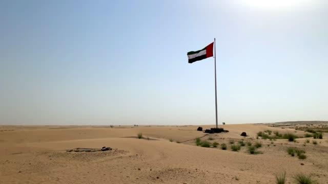 united arab emirates flag waving in arabian desert on blue sky background. - uae flag filmów i materiałów b-roll