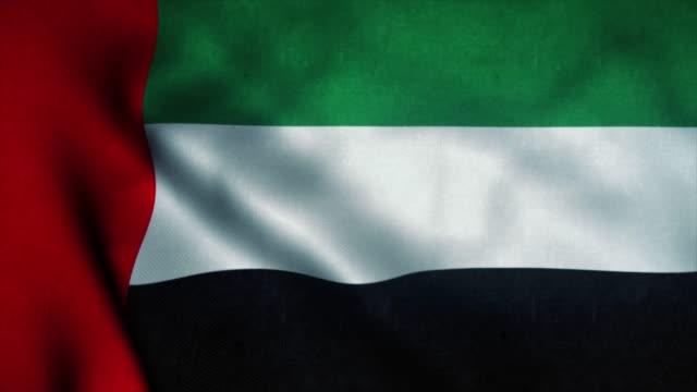 阿拉伯聯合大公國國旗在風中飄揚。阿拉伯聯合大公國國旗。阿拉伯聯合大公國無縫迴圈動畫的標誌。4k - uae flag 個影片檔及 b 捲影像