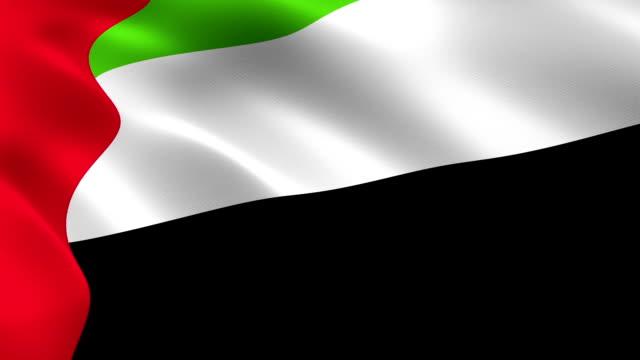 birleşik arap emirlikleri bayrağı rüzgarda sallanıyor. - uae flag stok videoları ve detay görüntü çekimi