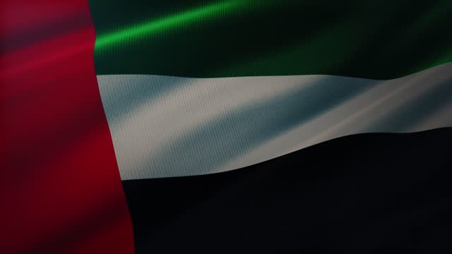 4k birleşik arap emirlikleri bayrağı son derece ayrıntılı kumaş dokusu ile rüzgarda sallayarak - uae flag stok videoları ve detay görüntü çekimi