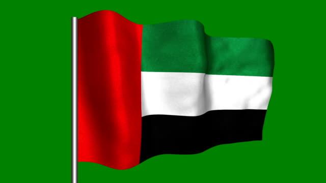 united arabemirates - looping, waving - uae national day стоковые видео и кадры b-roll