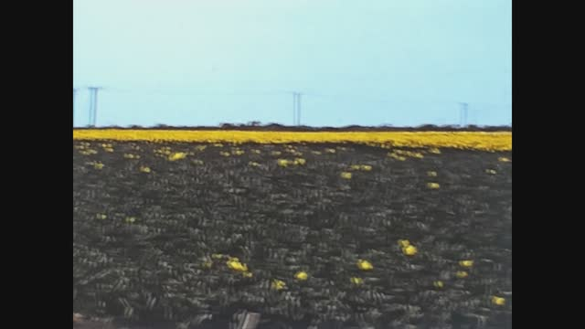 United Kingdom 1967, Crops in the English countryside