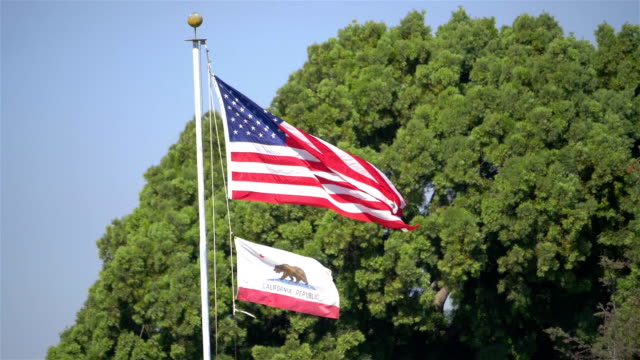 United States flag and california state flag waving in the wind in slow motion video