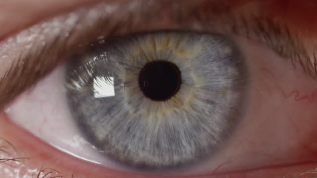 SLOW MOTION MACRO Unknown blue eyed man's pupil adjusting to changes in lighting SLOW MOTION MACRO: Unknown blue eyed man's pupil adjusting to changes in lighting. Pupil contracting and relaxing as eye adapts to light exposure. Male with intensely blue eyes looking straight ahead. extreme close up stock videos & royalty-free footage