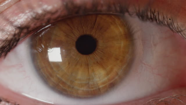 SLOW MOTION MACRO: Unknown girl's amber eye nervously searching left and right. video