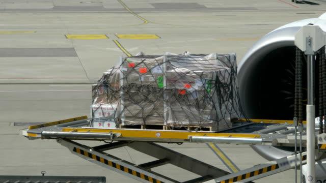 unloading transport cargo from the airplane in 4k - rozładowywać filmów i materiałów b-roll