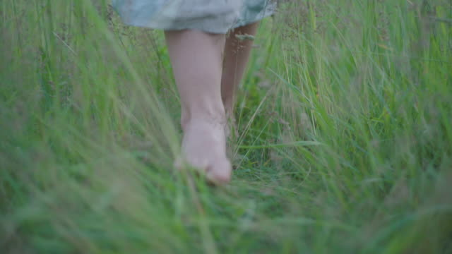 Unrecognizable barefoot Caucasian woman walking on green summer grass and closing camera with retro dress. Feet of young girl strolling in park outdoors. Beauty and nature concept