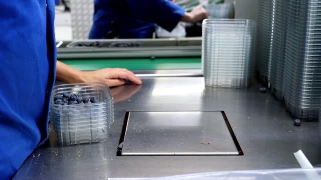 unrecognizable female hands working in fruit factory. - prodotti supermercato video stock e b–roll