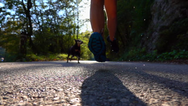 SLOW MOTION CLOSE UP: Unrecognizable girl in black sneakers running with dog. - video