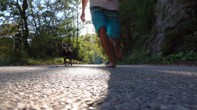 SLOW MOTION, LENS FLARE: Unrecognizable man running barefoot with companion dog. - video