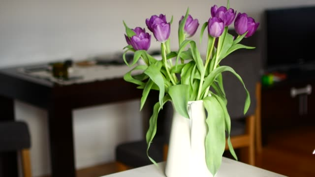 vídeos de stock e filmes b-roll de unrecognizable woman arranging flower at home - arranjo