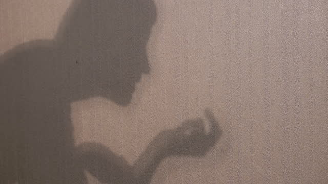 Unrecognizable Woman Shows a Theater of Shadows on Wall