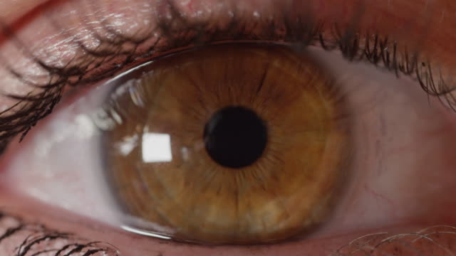 SLOW MOTION CLOSE UP: Unrecognizable woman with brown eyes looks into distance. video