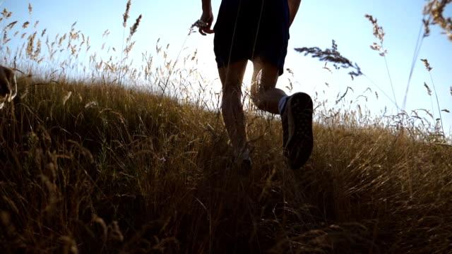 oigenkännlig ung man kör med sin hund på hill på landsbygden. labrador eller golden retriever jogging med sin ägare på ängen. hälsosam aktiv livsstil. slow motion bakre tillbaka visa - jogging hill bildbanksvideor och videomaterial från bakom kulisserna