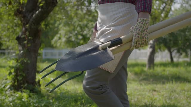 Unrecognized farmer in garden gloves walking through the garden with a shovel and pitchfork in hands close-up. Unrecognized farmer in garden gloves walking through the garden with a shovel and pitchfork in hands close-up. Concept of rural life, fruit-growing, gardening. Slow motion weeding stock videos & royalty-free footage